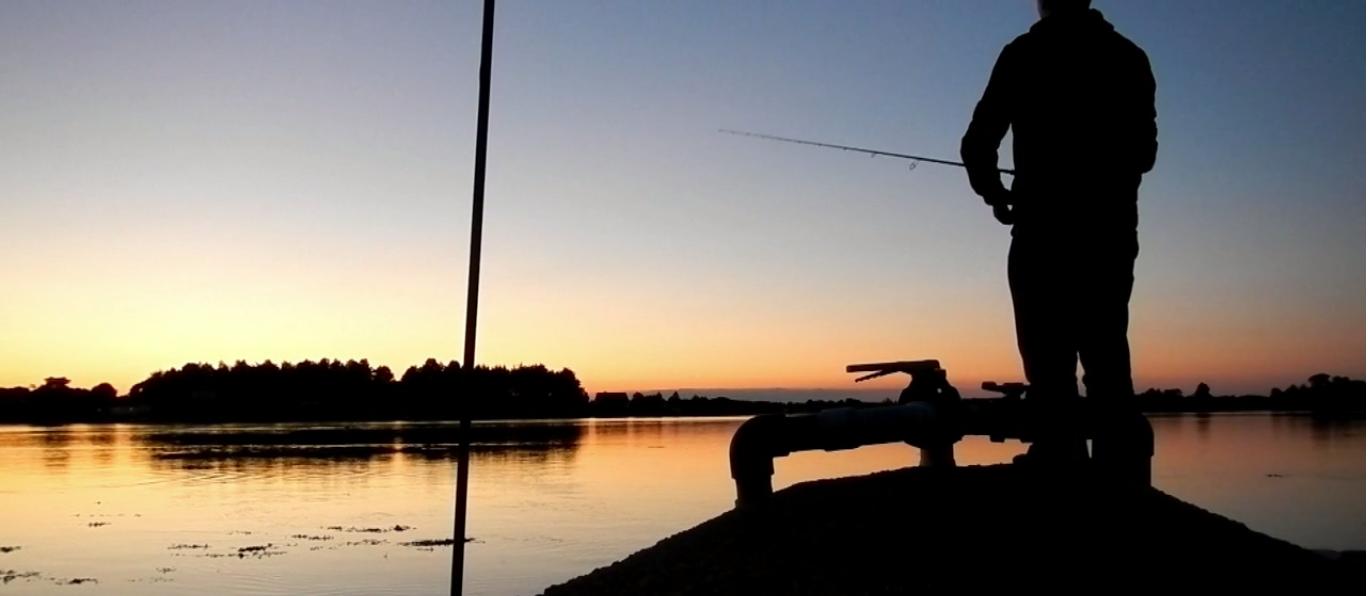 Seabass on sunset