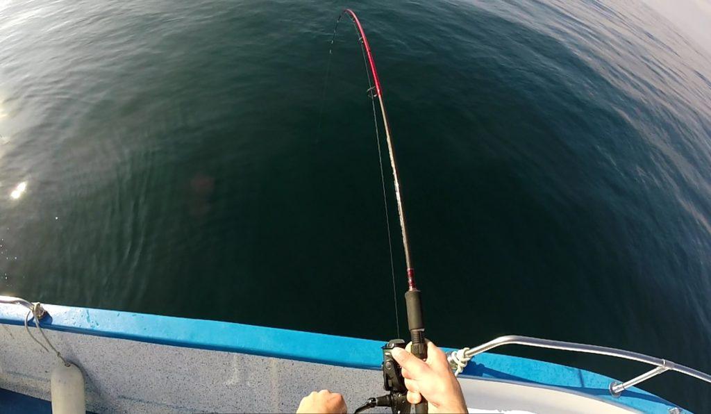 Canne de 2.3m en mer en bateau