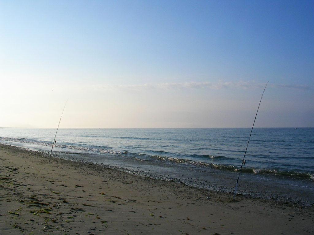 Lignes tendues sur une plage