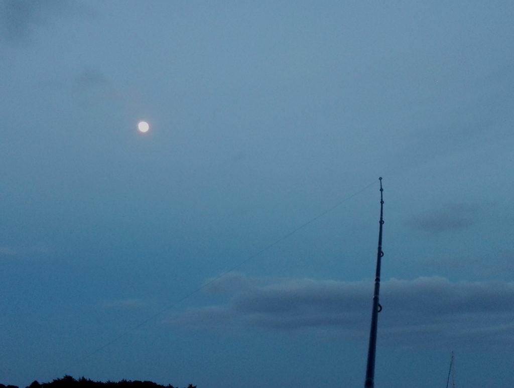 Pêcher de nuit vous donnera de très bons résultats pour peu que la météo soit clémente.