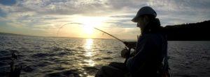 Pêche de la pélamide à la traîne en kayak