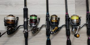 Moulinet spinning : quelle taille choisir ?