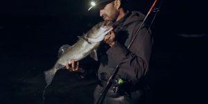 Pêche du bar de nuit / Waypoint